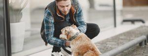 hondenpoep ergenis